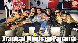 Tropical Minds en Panamá - Da Flow Internacional