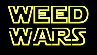 STAR WARS INTRO (WEED VERSION)
