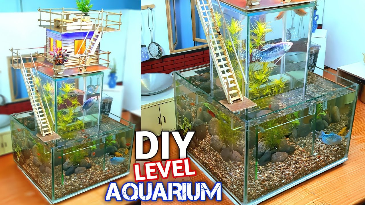 Homemade Aquarium Decorations - CREATE A SMALL HOME-LEVEL AQUARIUM FROM ICE STICK