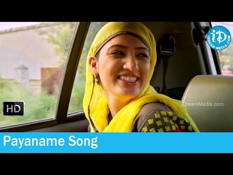 Chandamama Kathalu Movie Songs - Payaname Song - Mickey J Meyer Songs