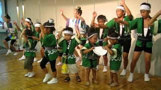 Awa Odori Festival in Tokushima 2011
