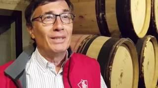 Concertation du SRDEII - Xavier Gomart - Directeur général de la Cave de Tain (Drôme))