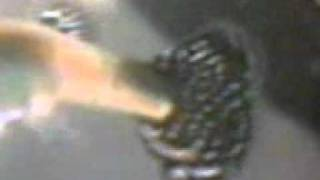 Repeat youtube video MUJZA OF HAZRAT IMAM HUSSAIN(A.S).3gp