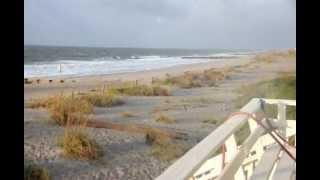 Edisto Beach Rentals South Carolina