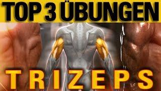 Top 3 Übungen - Trizeps - mit Erklärung der Anatomie