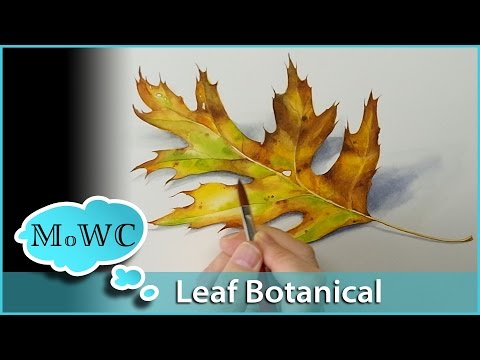 Realistic Leaf Painting in Watercolor – Botanical Illustration