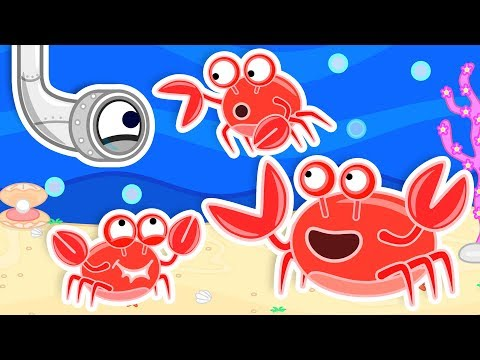 Lion Family Helping a Crab build a new Home Cartoon for Kids