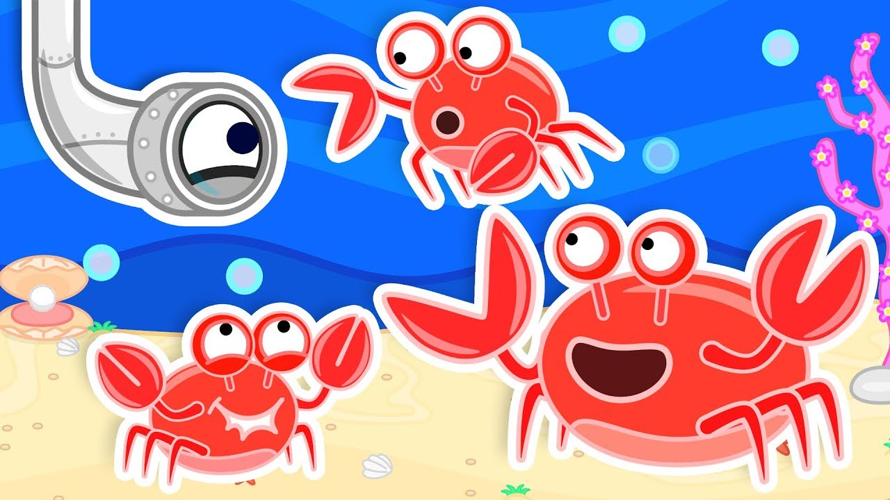 Lion Family Helping A Crab Build A New Home Cartoon For Kids Youtube Download crab images and photos. lion family helping a crab build a new home cartoon for kids