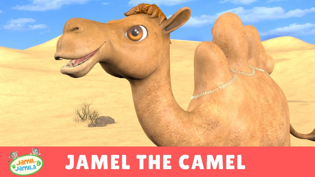 Download Jamel the Camel - Jamil and Jamila Songs for Kids