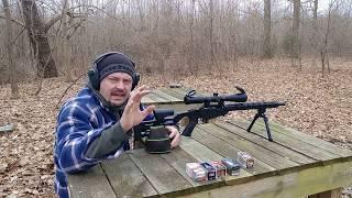 Ruger Precision Rimfire 22wmr Accuracy Test!
