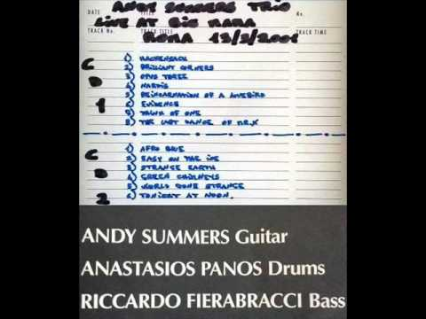 "ANDY SUMMERS TRIO - Roma 13-03-2001 ""Big Mama"" Italy (FULL AUDIO SHOW)"