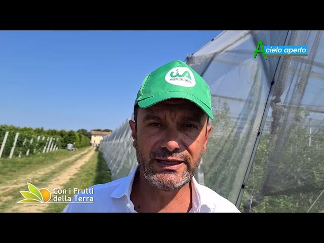 Puntata del 5/7/20 –  3° parte – Agriturismo: un progetto di legge per sostenerlo