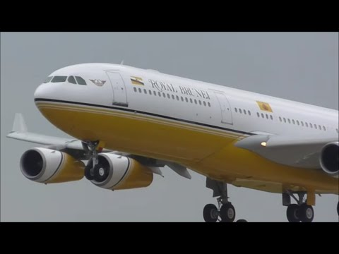 Heavy Afternoon Arrivals \ London Heathrow Airport, LHR | 15/10/15