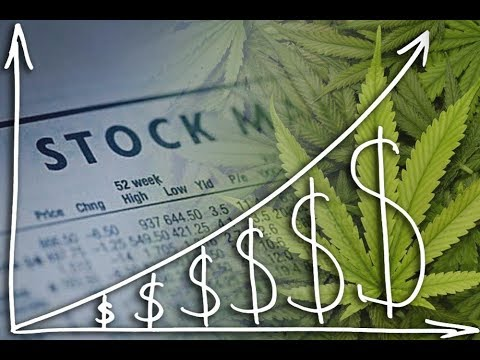 3 Great Cannabis/Hemp Stocks to Buy!