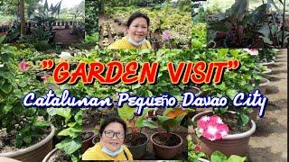 Garden Visit Again. By Lola Malyn