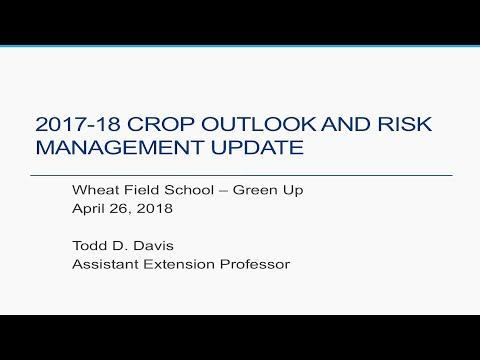 Wheat Outlook & Potential Return to Storage 2018