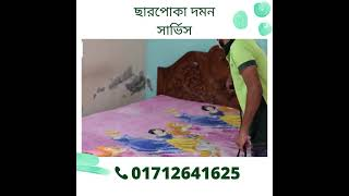 Bedbugs Control Services in Dhaka |
