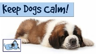 Relaxing Dog Music - Help Keep Your Dog Calm With Relaxing Music