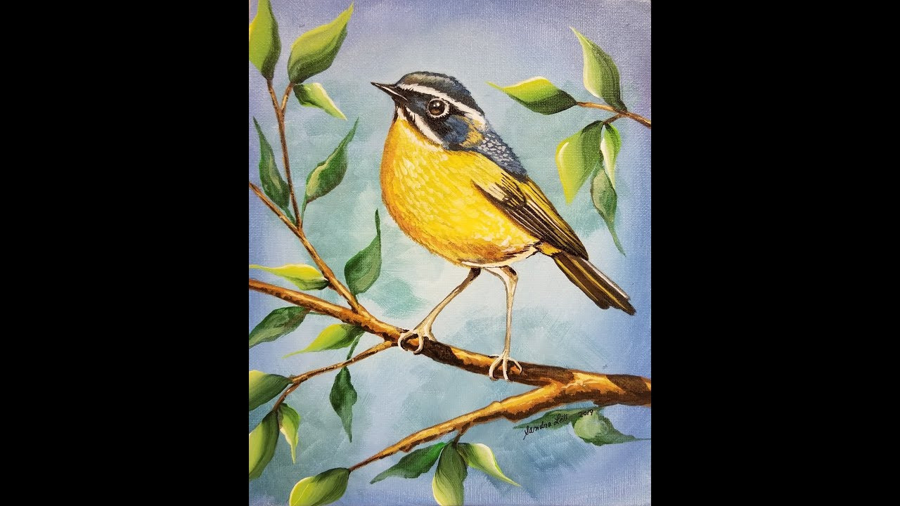 (356) WHITE-BROWED BUSH ROBIN Tutorial is now ready on my Thinkific platform with Sandra Lett