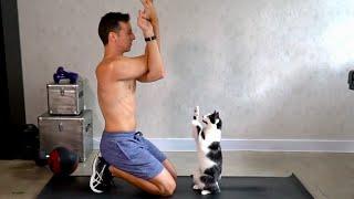 お願いだからちょっとあっち行っててよ!エクササイズの邪魔をしにくる猫たち