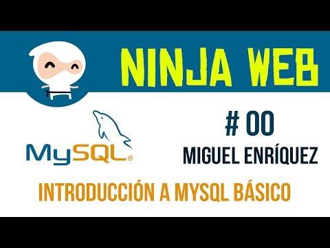 Curso bases de datos en mysql - 1 introducción