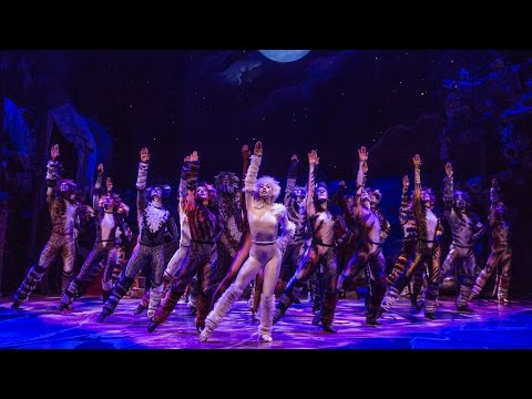 Broadway.com: #BuzzNow: CATS' Starry Opening Night