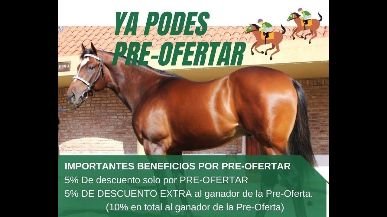 XXXVI GRAN REMATE HARAS DON FLORENTINO - Modalidad On Line - Ya se reciben pre-ofertas!!!
