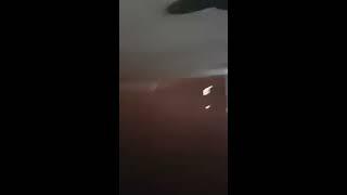 New Zealand police brutality pt. 1