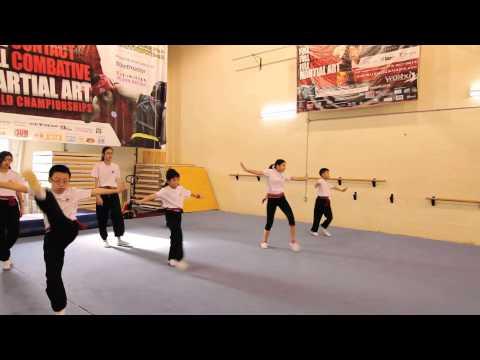 WUSHU KungFu - Sunny Tang Martial Arts Centre Mississauga - Highlight Reel
