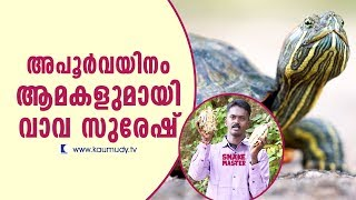 Wow! Cane Turtle and Red Eared Slider | Snake Master | Vava Suresh | Latest Episode