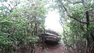 Appalachian Trail: Angel