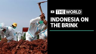Warnings Indonesia's COVID-19 Outbreak Will Further Worsen | The World