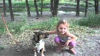 Дуэт девочки с собакой