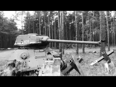 In the woods arround Berlin a WWII T34 tank wreck