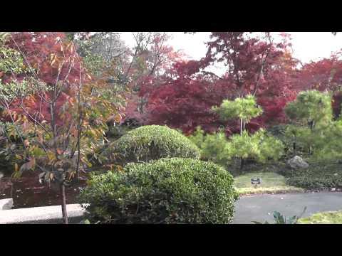 Fort Worth Japanese Gardens, Part 2