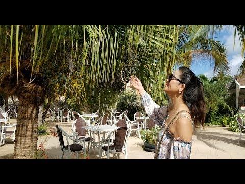 Cuba Melia Jardines Del Rey Cayo Coco 2019 - PART 2