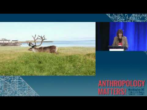 2017 AM: Executive Session: Anthropocene Landscapes, Infrastructures and Futures