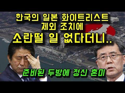 한국의 일본 화이트리스트 배제에 영향 미미하다?