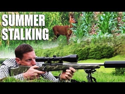 Summer Roebuck Stalking With Paul Childerley