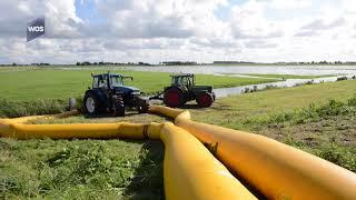 Wateroverlast in De Lier