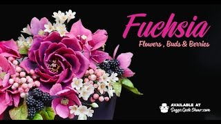 fuschia flowers buds and berries promo