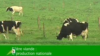 Terres de l'Aube - La filière viande