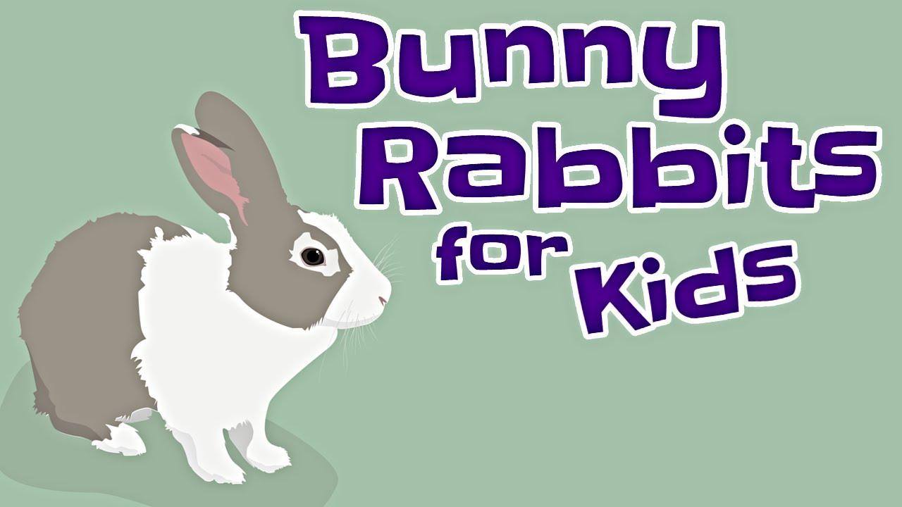 Bunny Rabbits for Kids