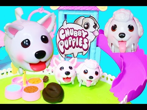 Toy Review CHUBBY PUPPIES Ultimate Dog Park Toy