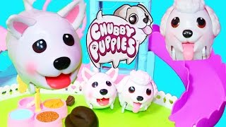 New CHUBBY PUPPIES POOPING DOG Giant Poo Toys Play Doh Poop Surprise Ultimate Dog Park 2015 Video