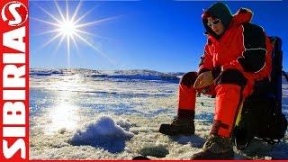 Первый ЛЁД. Ловля окуня на мормышку на мотыля и чёртик по первому льду