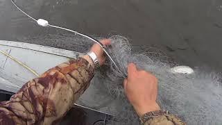 Рыбалка сетями на реке Печора. Ловля рыбы на крайнем севере. Fishing.
