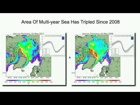 Is Multi-Year Sea Ice Disappearing?