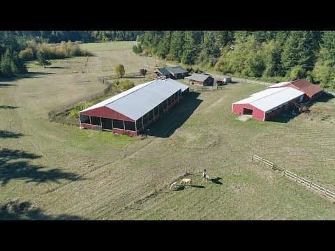 Amazing Horse Property For Sale In Oregon - 36435 Devitt Rd, Blodgett Oregon