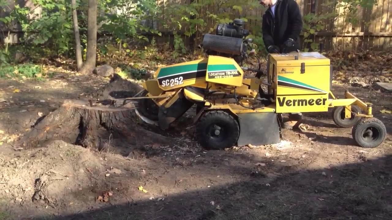 Stump Grinder Vermeer Sc252 Youtube